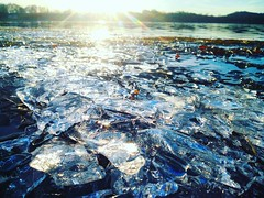 There's still a little ice left in this lake, even though we had 11°C today!  #lake #water #winter #walk #austria #linz #pichlingersee #sun #sunrays #light #walkbythelake #nature #freshair #ice #cold #frozen #freezing #frozenwater  #frozenlake #frozenla