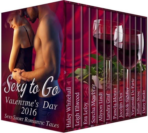 Sexy to Go Valentine's 2016 3D revised