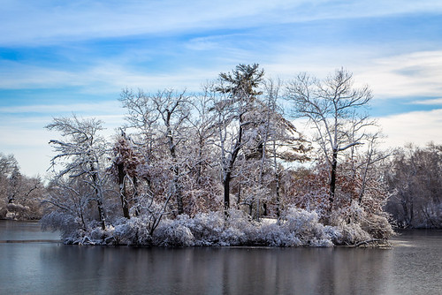 winter lake snow nature water landscape outdoors island rogerwilliamspark rwp winterwondersland