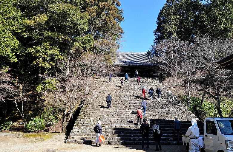 日本京都高雄三尾神護寺高雄茶屋08
