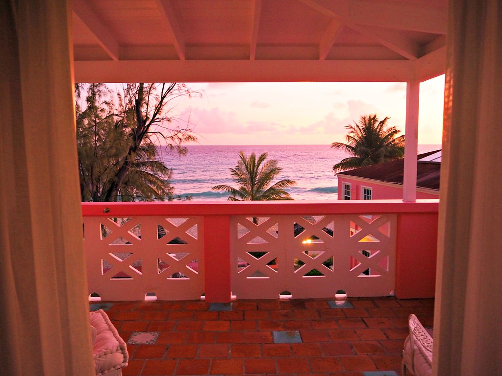 The Little Magpie Southern Palms Barbados Review 35