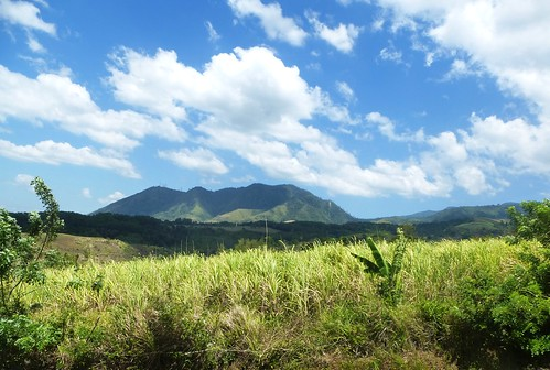 P16-Negros-Bacolod-San Carlos-route (27)