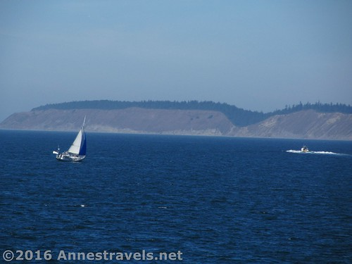 A sailboat enjoys the wind and clear day, Port Townsend Ferry across the Puget Sound, Washington