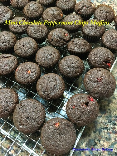 muffins_chocpeppermint1