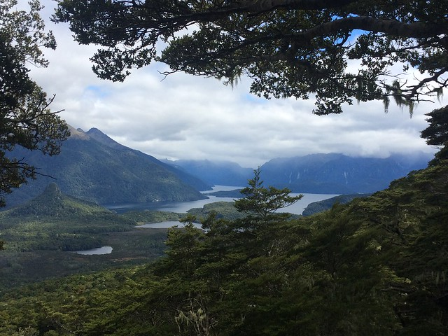 Hope Arm, Lake Manapouri - Fiordland NP
