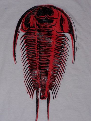 Trilobite black/red