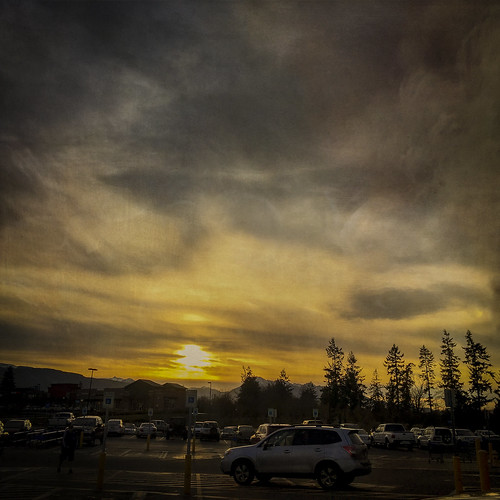 trees sunset cars beautiful shopping landscape photography washington state pacific northwest parking silhouettes lot sequim textures glorious olympic peninsula iphone flypaper