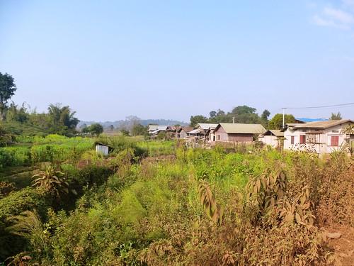 M16-Kyaukme-Shan-Nar Pain (4)