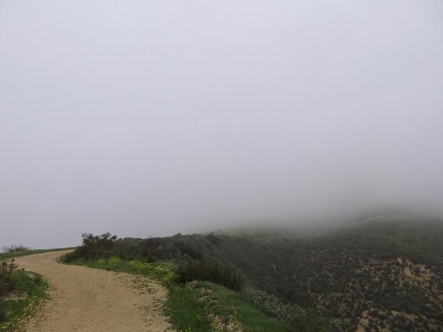 foggy sunday in malibu