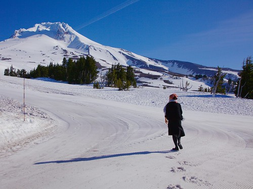 Timberline/Mt Hood