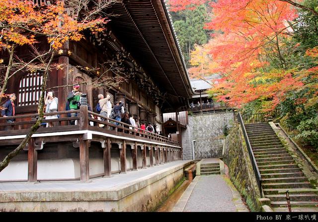 京都-永觀堂127
