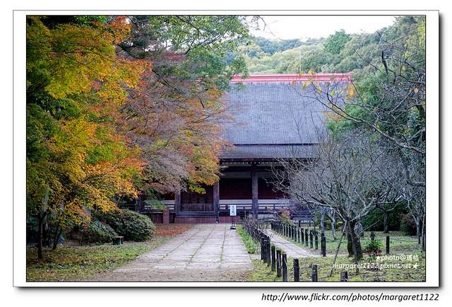 【關西旅遊】河內長野。觀心寺