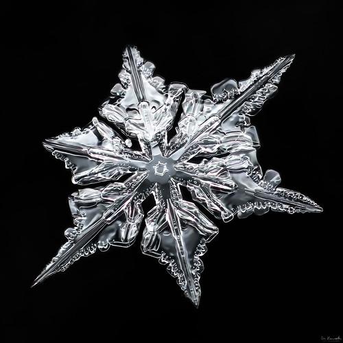 Snowflake-a-Day #26