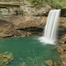 Greeter Falls, Firescald Creek, Savage Gulf Class II Natural-Scientific State Natural Area, Grundy County, Tennessee 1 by Alan Cressler