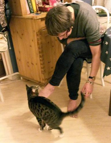 bjorns_sverigexmas-cocotesscats7