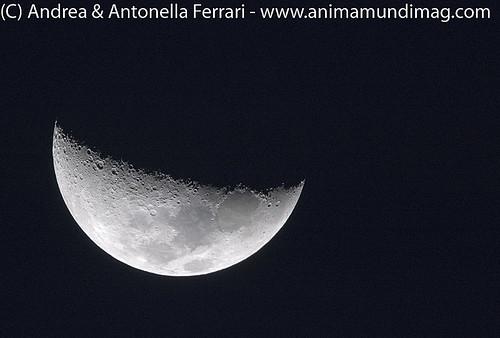 AnimaMundiMagazine posted a photo:Moon shot, handheld, Etosha NP, Namibia