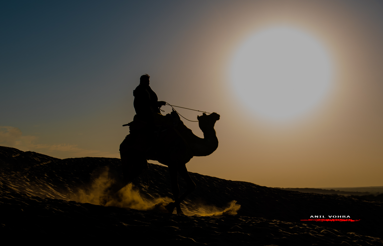 Camel Rider at Khuri