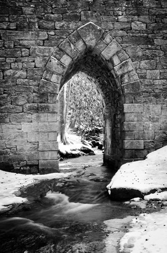 Poinsett Bridge Heritage Preserve-026