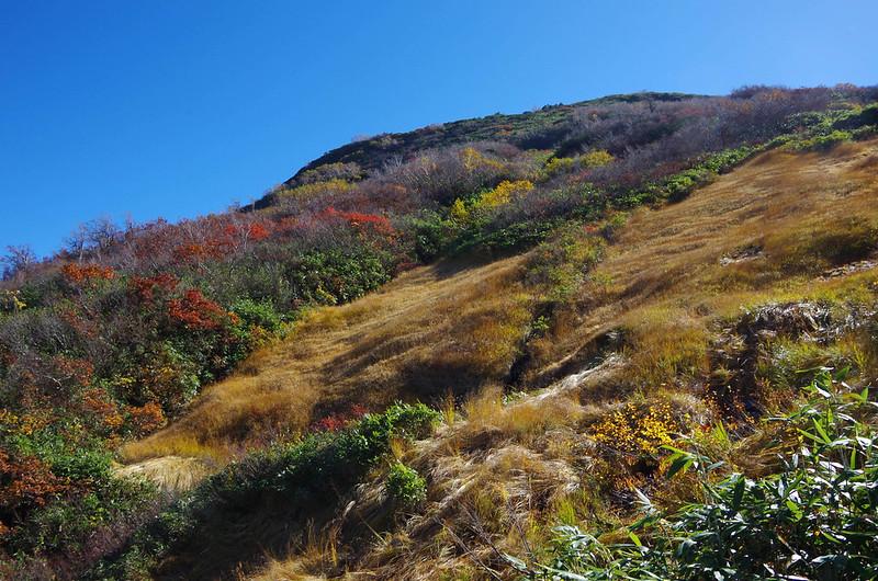 20141019-八海山(saku)-0029.jpg