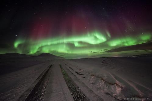 The Aurora Road