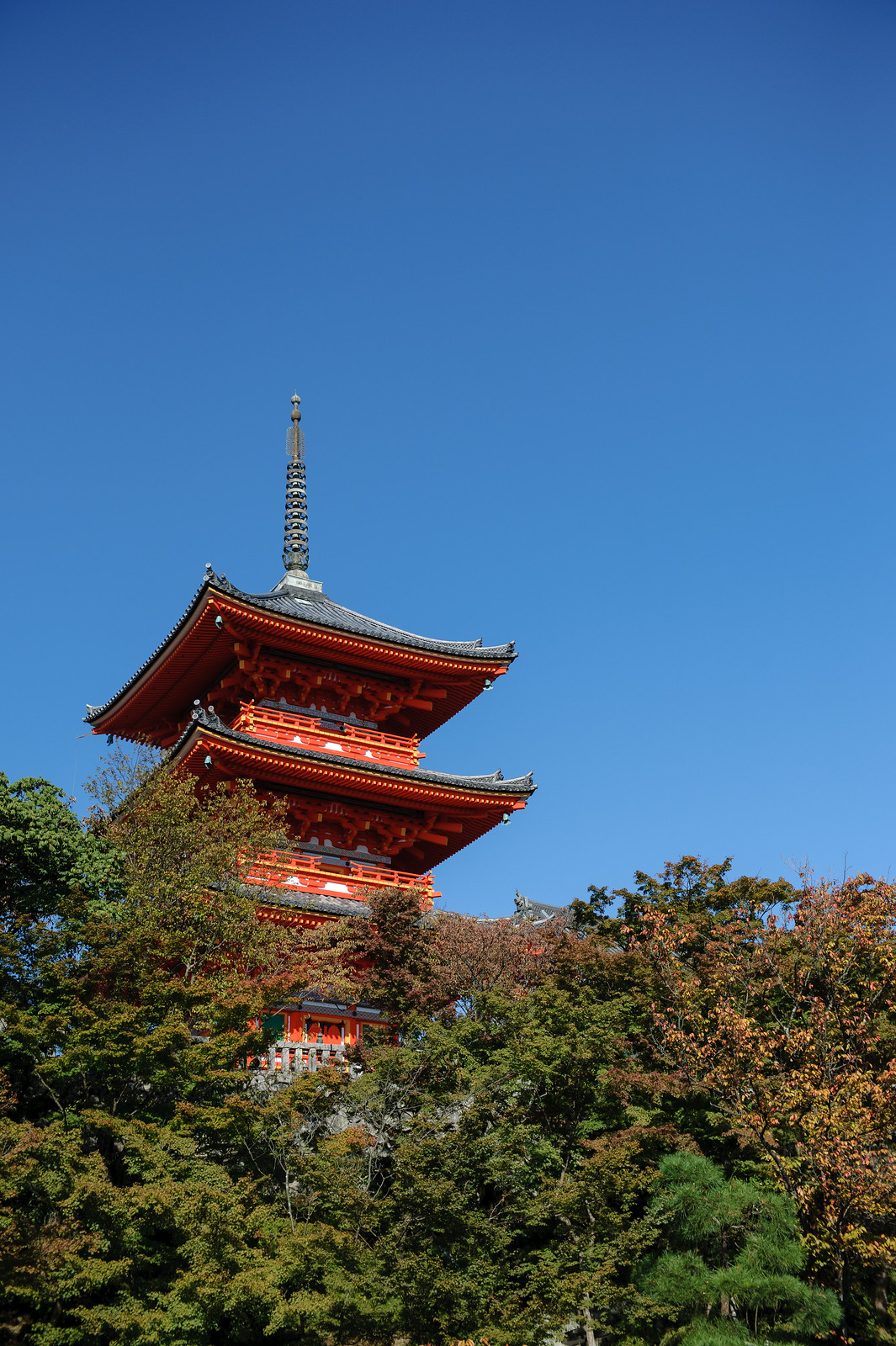 2015VQ@Kyoto-463