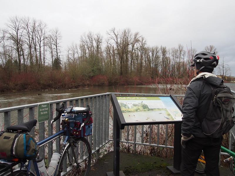 Kent at Delta Ponds