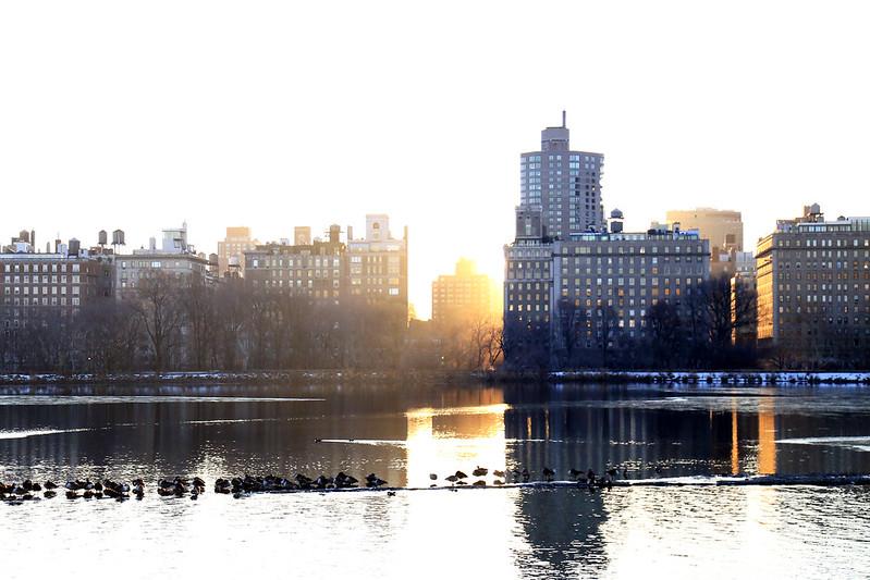 sunrise between building central park new-york