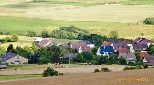 22.6.2011 Spazieren um Dedenbach