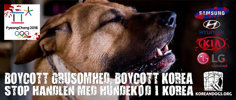 BOYCOTT GRUSOMHED, BOYCOTT KOREA (In Danish)