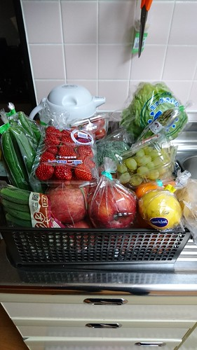 GM Diet preparation