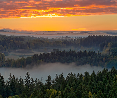 morning autumn red orange mist lake tree fall nature weather misty fog forest sunrise finland season landscape countryside haze woods scenery colorful europe glow outdoor vibrant background hill foggy scenic peaceful aerialview calm fantasy silence mysterious mystical glowing magical idyllic hdr mystic