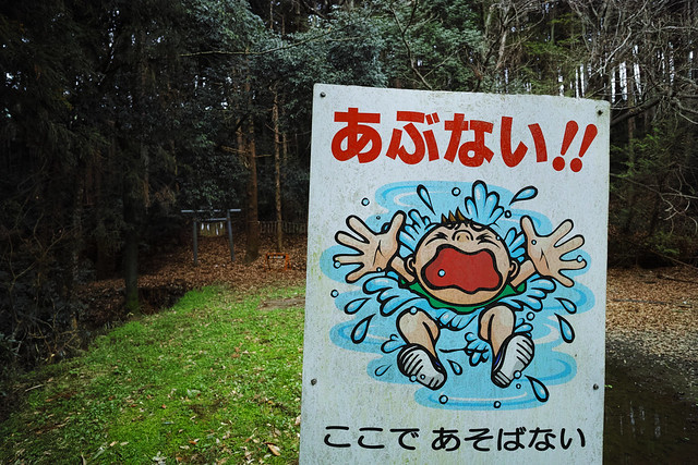 20160406_13_countryside & woodlands with a SIGMA dp0Q