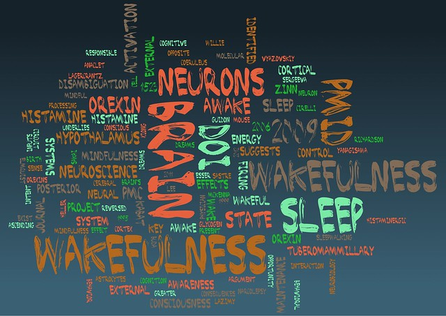 wakefulness-word-cloud