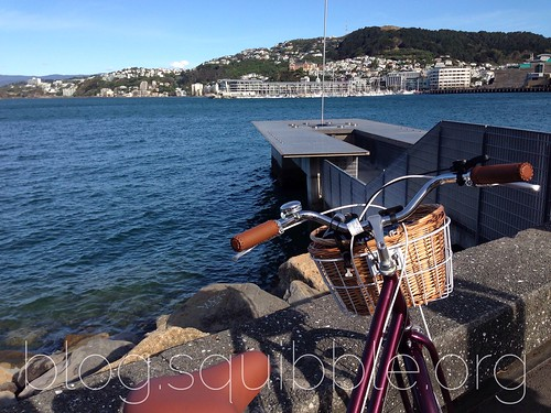 Bicycle Adventures January 2016 - Waterfront
