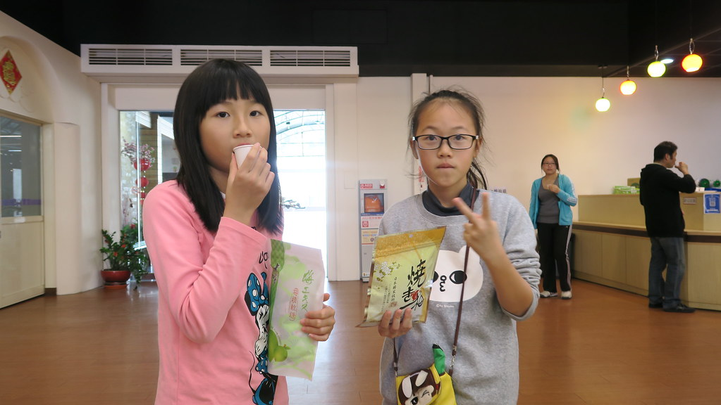 嘉義梅山梅間屋觀光工廠 (36)