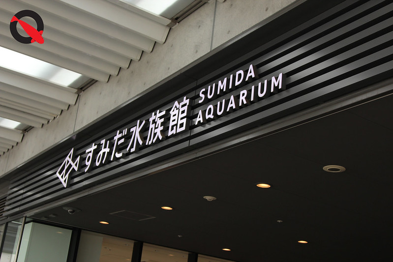 KQ Sumida Aquascape 16