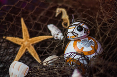 The Curious Case of BB-8: Washed Up