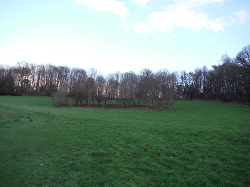 Fenced Clump, Midgham Park