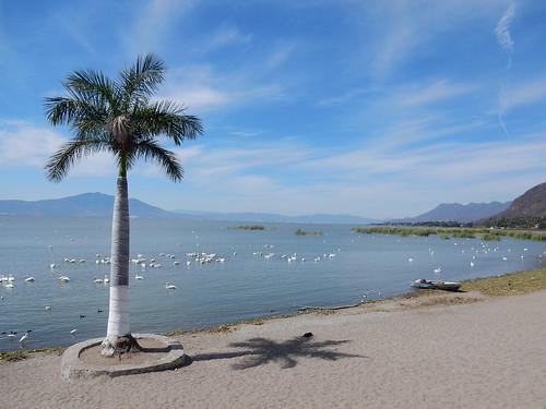 Chapala - aan het meer