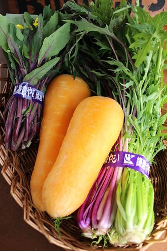 鎌倉野菜のサラダ3種