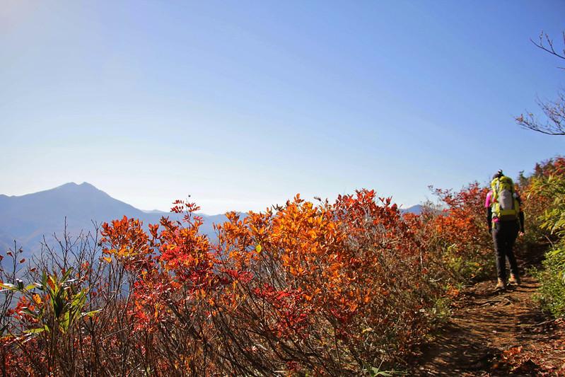 20141018-平ヶ岳-0202.jpg