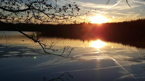 winter sunset sky sun lake reflection water photography phone pennsylvania cellphone cell samsung pa fading android waynecounty cellphonephotography barkleylake samsunggalaxynote