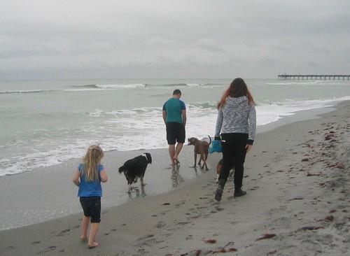Brohard Dog Beach