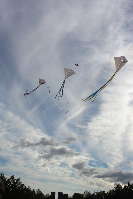 Kite Flight for Peace