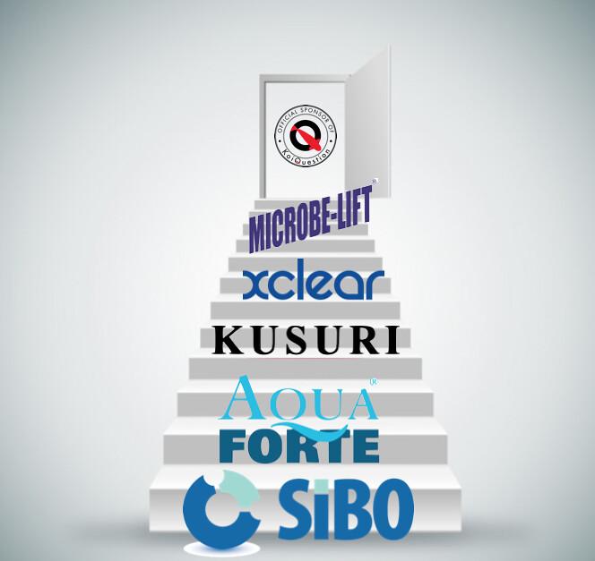 Sibo wordt hoofdsponsor van KoiQuestion in Nederland