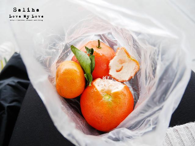 社子島溼地水鳥自行車道 (35)
