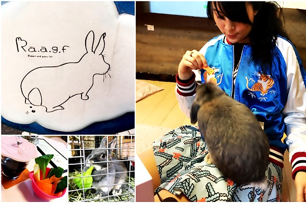 Ra.a.g.f Rabbit Cafe in Harajuku