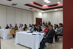 Taller Nacional: La Asociación Estratégica de la Unión Europea con Centroamérica