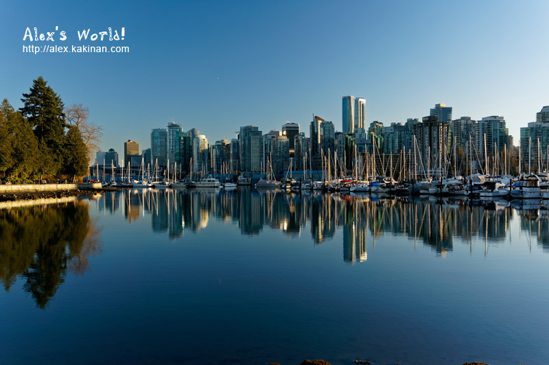 Photo of Vancouver taken from the Seawall at Stanley Park