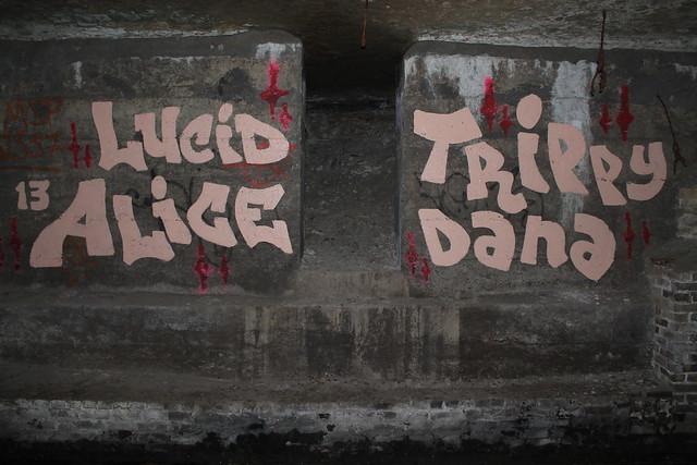 lucid alice - trippy dana